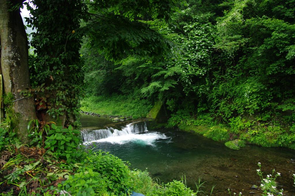 養沢川と乙津村集落 ニジマス釣りは2kmに及ぶ